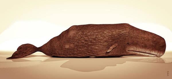 Digital Art - Whale by Matt Lindley