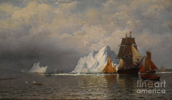 Painting - Whaler And Fishing Vessels Near The Coast Of Labrador by Celestial Images