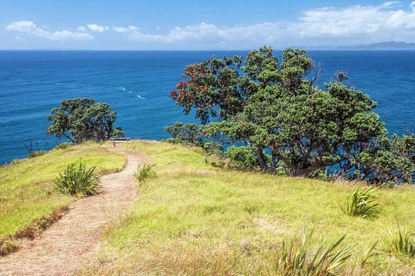 Wall Art - Photograph - Whaler's Lookout Great Barrier Island New Zealand by Joan Carroll