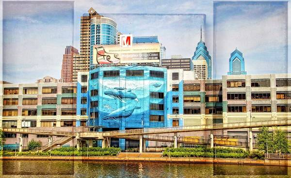 Photograph - Whales In The City by Alice Gipson
