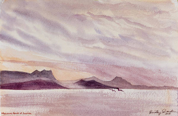 Whangarei Heads At Sunrise, New Zealand Art Print