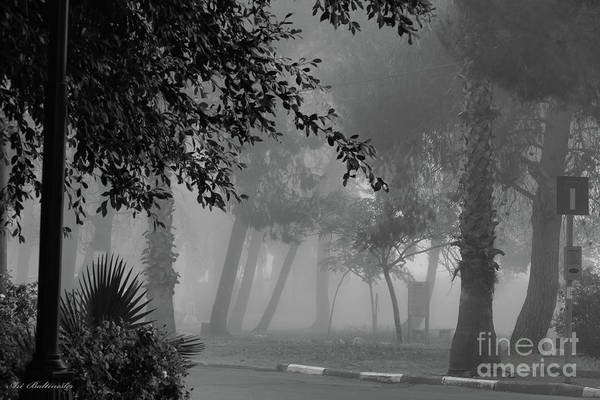 Photograph - What A Foggy Morning by Arik Baltinester