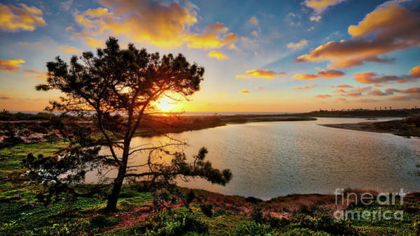 Photograph - What A Glow At The Batiquitos Lagoon by David Levin
