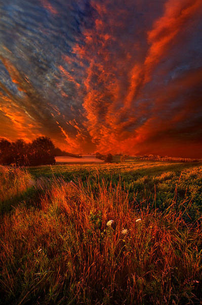 Photograph - What About Now by Phil Koch