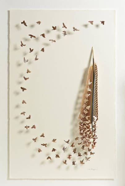Cutout Wall Art - Mixed Media - What Happens When You Tip A Feather Upside Down by Chris Maynard