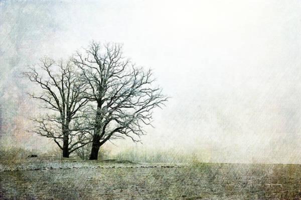 Photograph - What Tomorrow Brings by Randi Grace Nilsberg