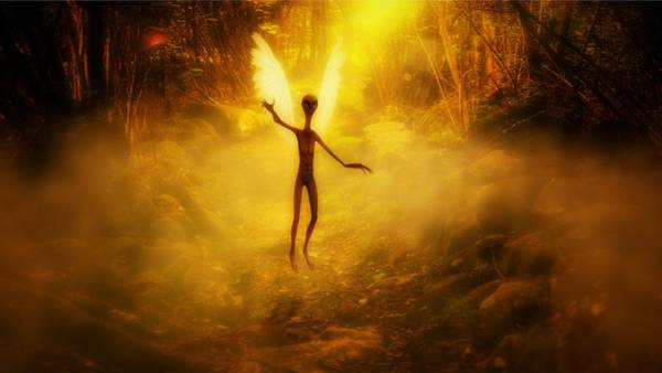 Area 51 Digital Art - What Were Angels By Raphael Terra by Raphael Terra