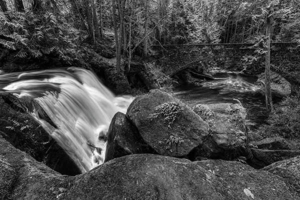 Photograph - Whatcom Falls Black And White by Mark Kiver