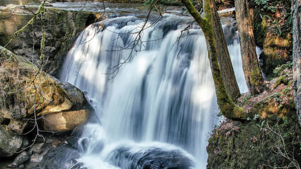 Wall Art - Photograph - Whatcom Falls by Tony Locke