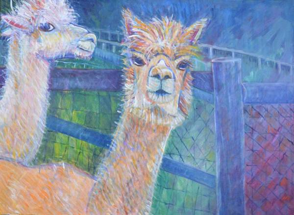 Alpaca Painting - What's Up? by C Stick