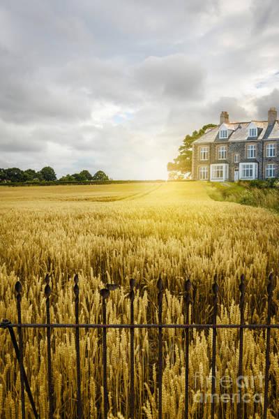 English Cottage Photograph - Wheat Field by Amanda Elwell
