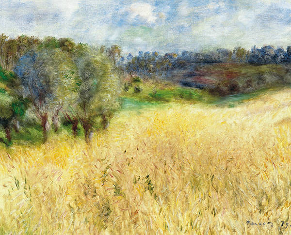 Painting - Wheat Field  by Auguste Renoir