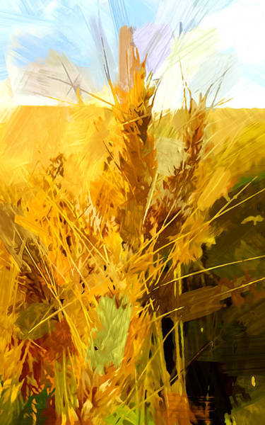 Barley Painting - Wheat Field by Chris Butler