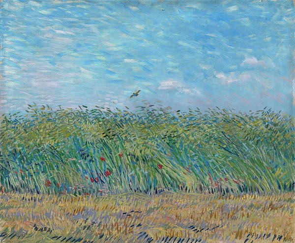 Pokes Wall Art - Painting - Wheat Field With A Lark   by Vincent Van Gogh