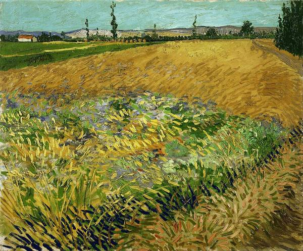 Wall Art - Painting - Wheat Field With Alpilles Foothills In The Background At Wheat Fields Van Gogh Series, By Vincent Va by Celestial Images