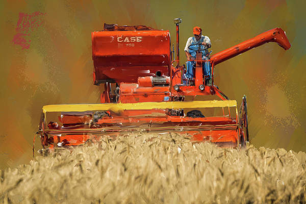 Wall Art - Photograph - Wheat Harvest by Paul Freidlund