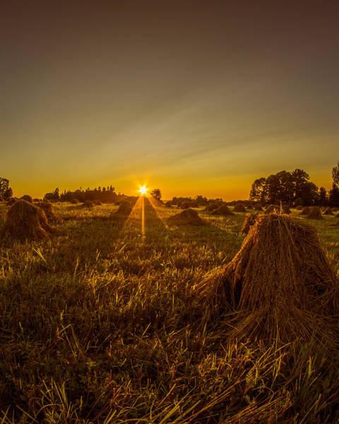 Photograph - Wheat Shocks by Chris Bordeleau