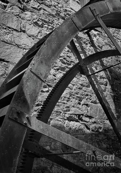 Photograph - Wheel Black And White by Karen Adams