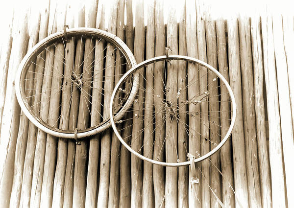 Photograph - Wheels On Bamboo by Grace Dillon