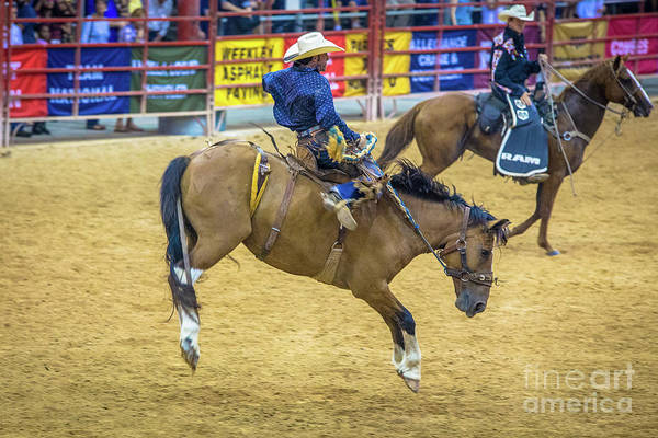 Prca Wall Art - Photograph - When A Horse Tries Hard  by Rene Triay Photography
