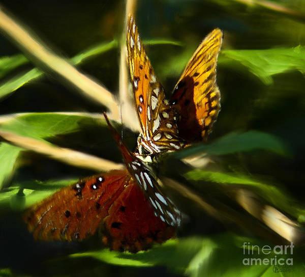 When Butterflies Kiss Art Print