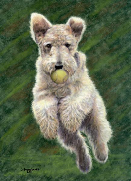 Fox Terrier Wall Art - Drawing - When Dogs Fly by Debbie Stonebraker