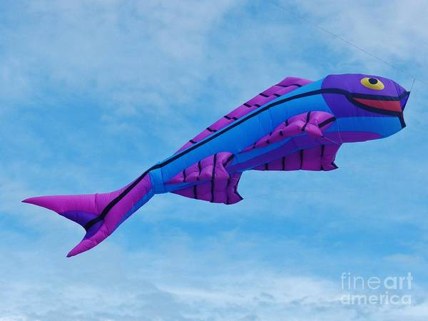 Flying A Kite Photograph - When Fish Fly by Snapshot Studio