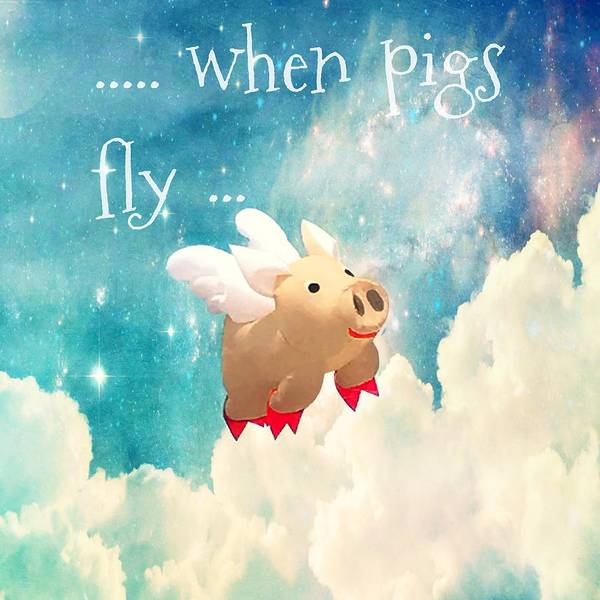 Pig Photograph - When Pigs Fly by Marianna Mills