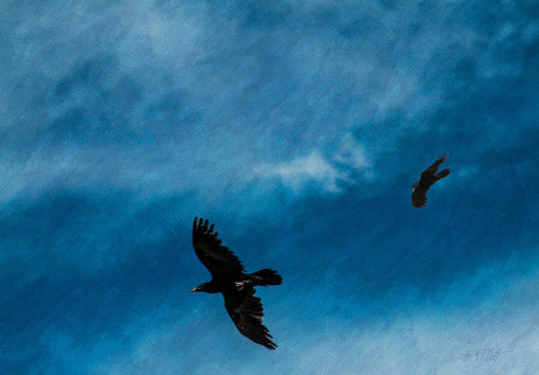 Photograph - When Ravens Come Calling by Bonnie Follett
