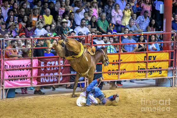 Wall Art - Photograph - When Riding A Bucking Horse Turns Into Pain by Rene Triay Photography
