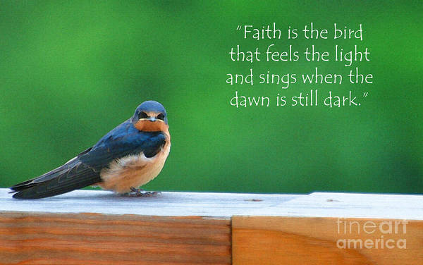 Barn Swallow Wall Art - Painting - When The Dawn Is Still Dark by Diane E Berry