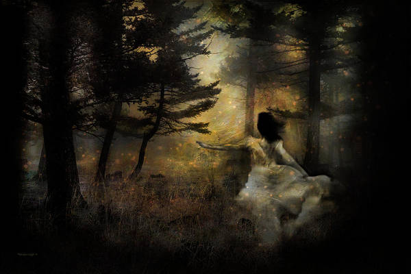 Wall Art - Photograph - When The Forest Calls by Theresa Tahara