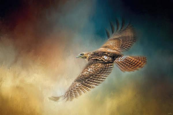 When The Redtail Flies At Sunset Hawk Art Art Print