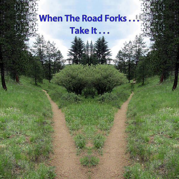 Conundrum Digital Art - When The Road Forks, Take It Into The Forest by Julia L Wright