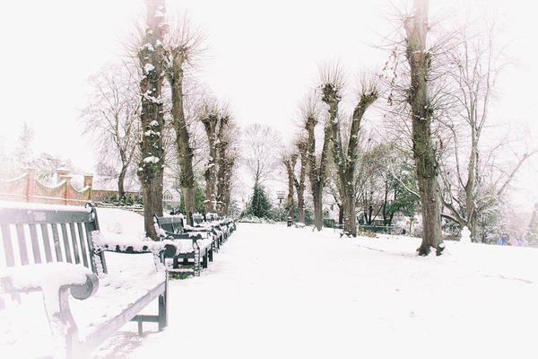 First Snow Wall Art - Photograph - When Winter Bites by Martin Newman