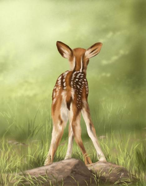 Fawn Painting - Where Is My Mom? by Veronica Minozzi