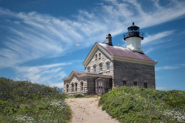 Photograph - Where The Gulls Are by Robin-Lee Vieira