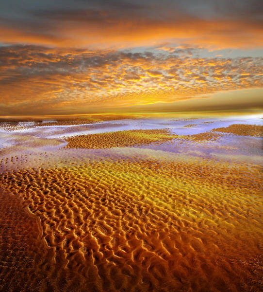 Low Tides Photograph - Where The Heart Is by Jacky Gerritsen