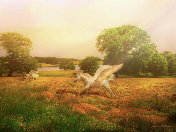 Photograph - Where The Pegasus Live by Mike Savad - Abbie Shores
