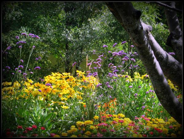 Where The Wild Flowers Grow Art Print by Trina Prenzi