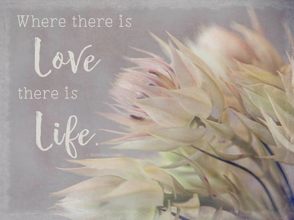 Photograph - Where There Is Love by Teresa Wilson