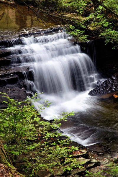 Photograph - Cascading Waterfall by Christina Rollo