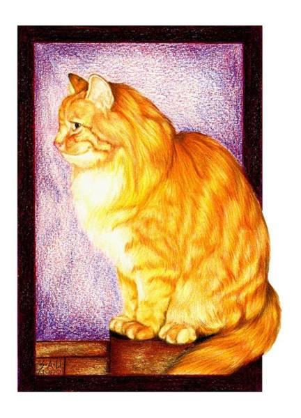 Tabby Drawing - Where's My Dinner by Sheryl Unwin