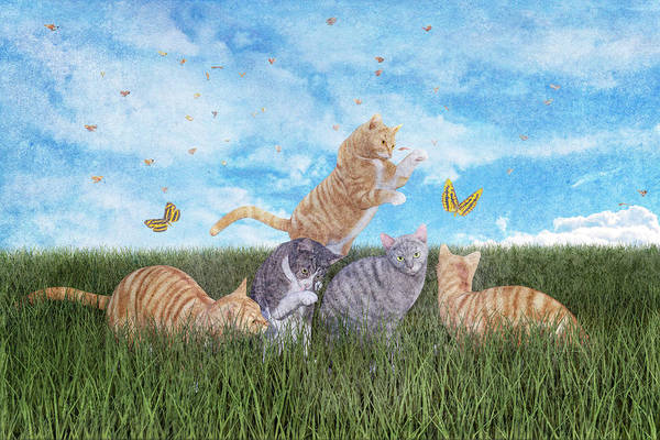 Orange Butterfly Digital Art - Whimsical Cats by Betsy Knapp