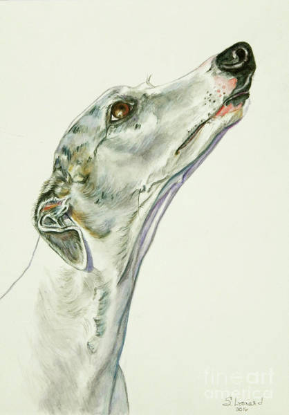 Dog Painting - Whippet by Suzanne Leonard