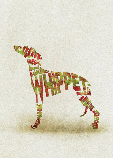 Whippet Wall Art - Painting - Whippet Watercolor Painting / Typographic Art by Inspirowl Design