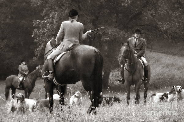 Photograph - Whipping In The Hounds In Black And White by Angela Rath