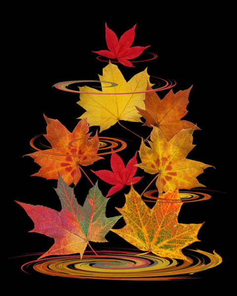 Photograph - Whirling Autumn Leaves by Gill Billington