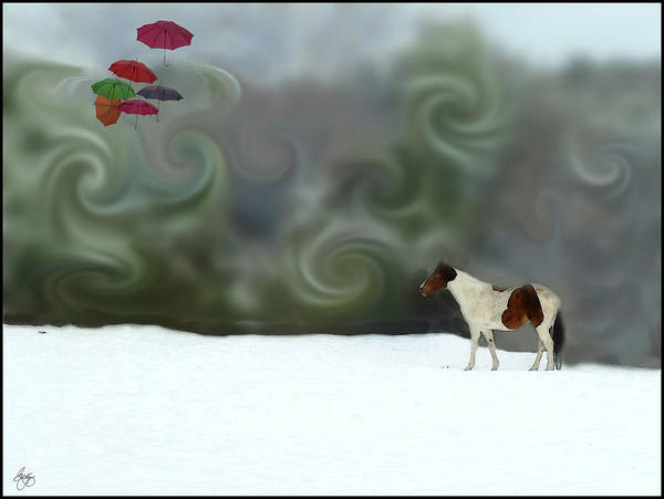 Photograph - Whirling Dreams by Wayne King
