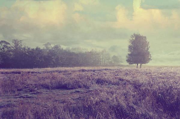 Photograph - Whispering Fields by Jenny Rainbow
